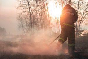 Bushfire Phoenix Health Fund